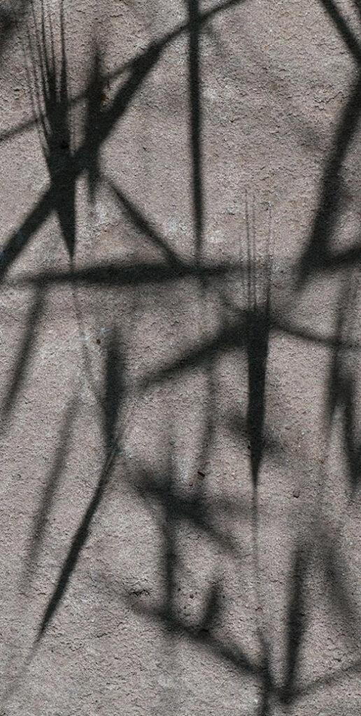 grass_shadow